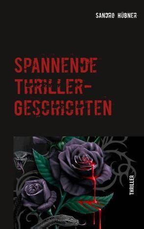 Spannende Thriller-Geschichten von Hübner,  Sandro