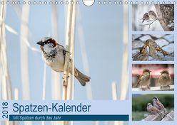 Spatzen-Kalender (Wandkalender 2018 DIN A4 quer) von Drews,  Marianne