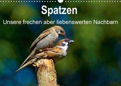 Spatzen, unsere frechen aber liebenswerte Nachbarn (Wandkalender 2018 DIN A3 quer) von Klapp,  Lutz