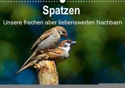 Spatzen, unsere frechen aber liebenswerte Nachbarn (Wandkalender 2019 DIN A3 quer) von Klapp,  Lutz