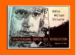 Spaziergang durch die Revolution von Stiura,  Odin Milan