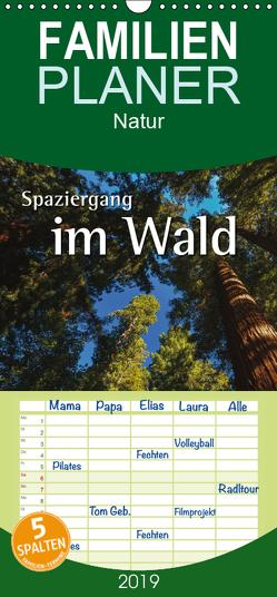 Spaziergang im Wald – Familienplaner hoch (Wandkalender 2019 , 21 cm x 45 cm, hoch) von Hoffmann,  Nils