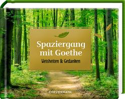 Spaziergang mit Goethe von Goethe,  Johann Wolfgang von