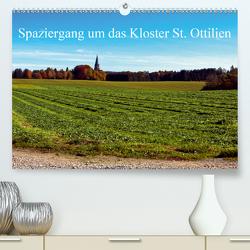 Spaziergang um das Kloster St. Ottilien (Premium, hochwertiger DIN A2 Wandkalender 2020, Kunstdruck in Hochglanz) von Marten,  Martina