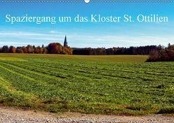 Spaziergang um das Kloster St. Ottilien (Wandkalender 2018 DIN A2 quer) von Marten,  Martina