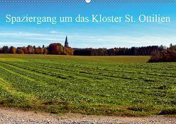 Spaziergang um das Kloster St. Ottilien (Wandkalender 2019 DIN A2 quer) von Marten,  Martina