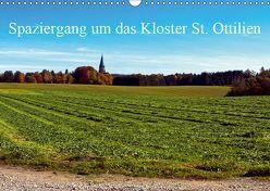 Spaziergang um das Kloster St. Ottilien (Wandkalender 2019 DIN A3 quer) von Marten,  Martina