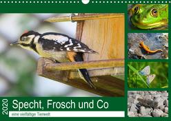 Specht, Frosch und Co – eine vielfältige Tierwelt (Wandkalender 2020 DIN A3 quer) von Schimmack,  Claudia