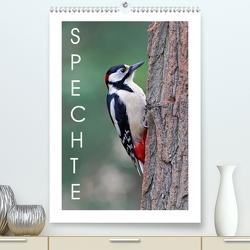 Spechte (Premium, hochwertiger DIN A2 Wandkalender 2020, Kunstdruck in Hochglanz) von Wolf,  Gerald