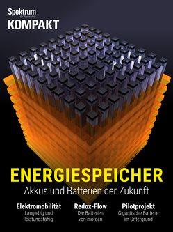 Spektrum Kompakt – Energiespeicher
