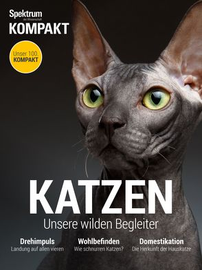 Spektrum Kompakt – Katzen
