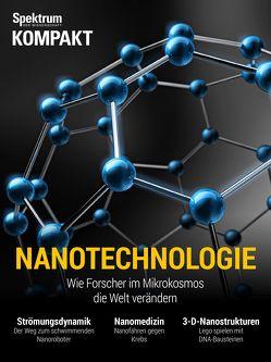Spektrum Kompakt – Nanotechnologie