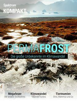 Spektrum Kompakt – Permafrost