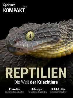 Spektrum Kompakt – Reptilien