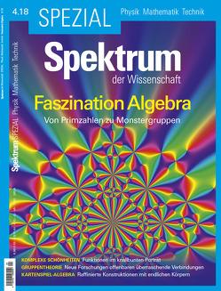 Spektrum Spezial – Faszination Algebra