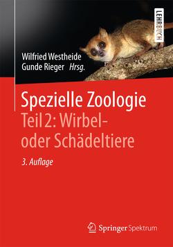 Spezielle Zoologie. Teil 2: Wirbel- oder Schädeltiere von Rieger,  Gunde, Rieger,  Reinhard, Westheide,  Wilfried