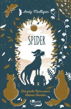 Spider. Die große Reise eines kleinen Hundes von Gutzschhahn,  Uwe-Michael, Horstschäfer,  Felicitas, Mulligan,  Andy
