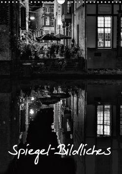 Spiegel-Bildliches (Wandkalender 2019 DIN A3 hoch) von Klesse,  Andreas