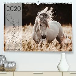 Spiegel deiner Seele (Premium, hochwertiger DIN A2 Wandkalender 2020, Kunstdruck in Hochglanz) von Mischnik,  Sabrina