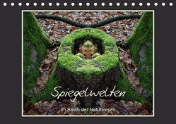 Spiegelwelten – Im Reich der Naturwesen (Tischkalender 2019 DIN A5 quer) von Hubner,  Katharina