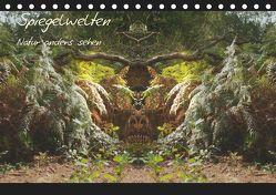 Spiegelwelten – Natur anders sehen (Tischkalender 2019 DIN A5 quer)