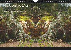 Spiegelwelten – Natur anders sehen (Wandkalender 2019 DIN A4 quer) von Hubner,  Katharina