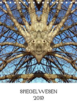 SPIEGELWESEN (Tischkalender 2019 DIN A5 hoch) von Braun,  Dieter