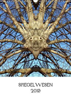 SPIEGELWESEN (Wandkalender 2019 DIN A3 hoch) von Braun,  Dieter