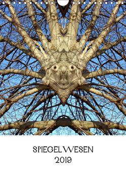 SPIEGELWESEN (Wandkalender 2019 DIN A4 hoch) von Braun,  Dieter