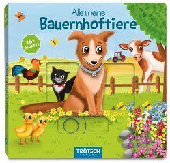 Spielbuch Alle meine Bauernhoftiere von Angelmahr,  Anja