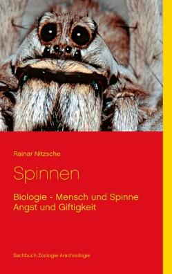 Spinnen von Nitzsche,  Rainar