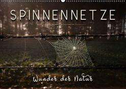 Spinnennetze – Wunder der Natur (Wandkalender 2018 DIN A2 quer) von Roder,  Peter