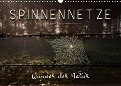 Spinnennetze – Wunder der Natur (Wandkalender 2018 DIN A3 quer) von Roder,  Peter