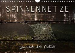 Spinnennetze – Wunder der Natur (Wandkalender 2018 DIN A4 quer) von Roder,  Peter