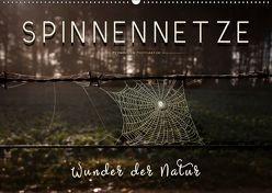 Spinnennetze – Wunder der Natur (Wandkalender 2019 DIN A2 quer) von Roder,  Peter