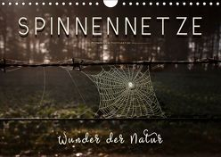 Spinnennetze – Wunder der Natur (Wandkalender 2019 DIN A4 quer) von Roder,  Peter