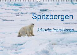 Spitzbergen – Arktische Impressionen (Wandkalender 2019 DIN A3 quer) von Martin,  Wilfried