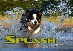 SPLASH – Hunde im Wasser (Wandkalender 2019 DIN A2 quer)