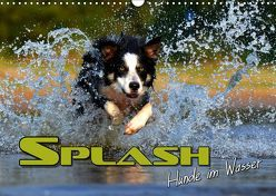 SPLASH – Hunde im Wasser (Wandkalender 2019 DIN A3 quer) von Bleicher,  Renate