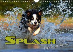 SPLASH – Hunde im Wasser (Wandkalender 2019 DIN A4 quer) von Bleicher,  Renate