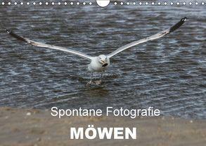 Spontane Fotografie – Möwen (Wandkalender 2018 DIN A4 quer) von MP,  Melanie