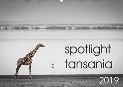spotlight tansania (Wandkalender 2019 DIN A2 quer) von und Stefanie Krüger,  Carsten