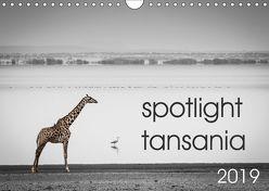 spotlight tansania (Wandkalender 2019 DIN A4 quer) von und Stefanie Krüger,  Carsten