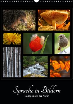 Sprache in Bildern – Collagen aus der Natur (Wandkalender 2019 DIN A3 hoch) von Michel,  Ingrid