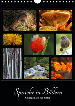 Sprache in Bildern – Collagen aus der Natur (Wandkalender 2019 DIN A4 hoch) von Michel,  Ingrid