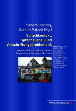 Sprachkontakt, Sprachausbau und Verschriftungsproblematik von Herling,  Sandra, Patzelt,  Carolin
