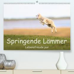 Springende Lämmer: Lebensfreude pur (Premium, hochwertiger DIN A2 Wandkalender 2020, Kunstdruck in Hochglanz) von Weiß,  Elmar