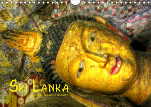 Sri Lanka – Tempel, Tee und Elefanten (Wandkalender 2020 DIN A4 quer) von Stamm,  Dirk