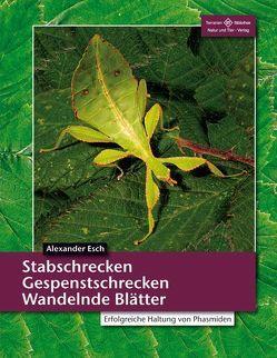 Stabschrecken, Gespenstschrecken, Wandelnde Blätter von Esch,  Alexander