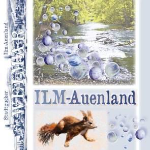 Stadtgucker – Weimar – Ilm-Auenland von Herz,  Andrea